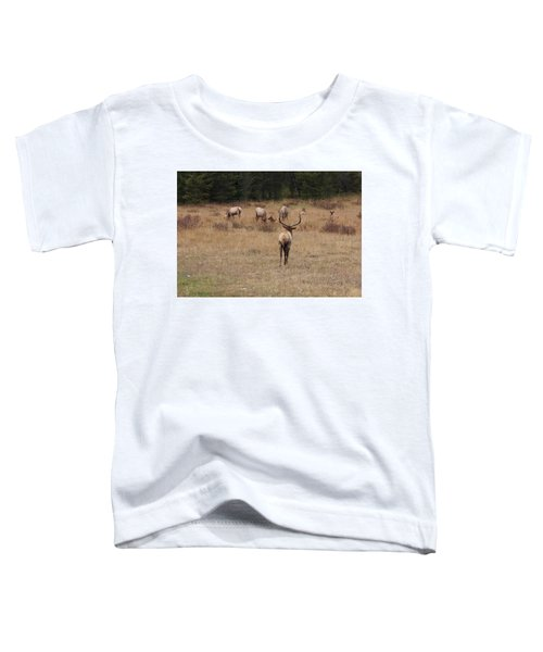 Faabullelk113rmnp Toddler T-Shirt