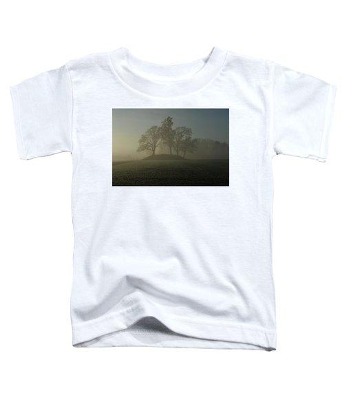 Fiddler's Mound Toddler T-Shirt
