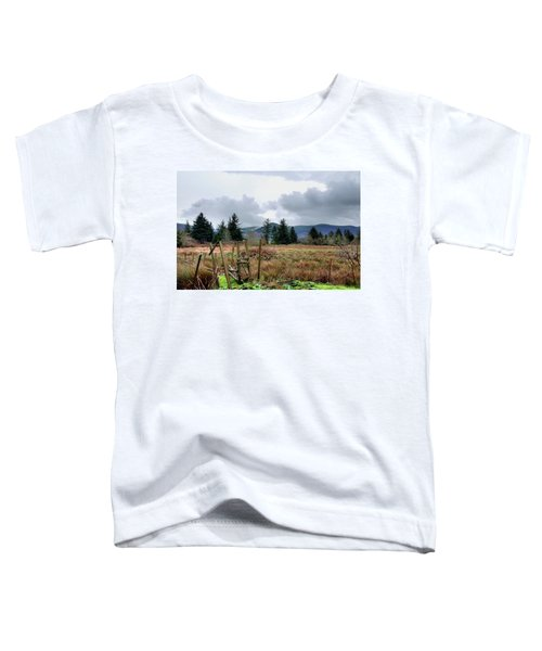 Field, Clouds, Distant Foggy Hills Toddler T-Shirt