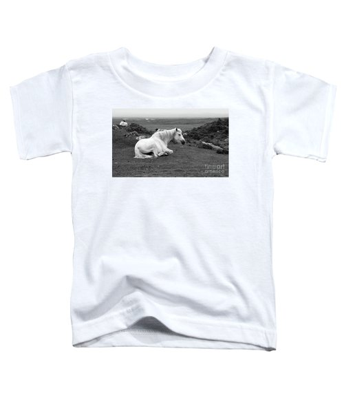 Fooggy Day Roundstone Toddler T-Shirt
