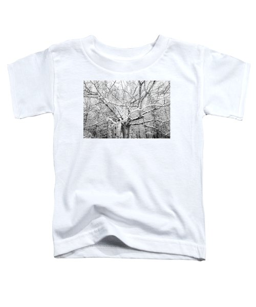 Frosted Toddler T-Shirt