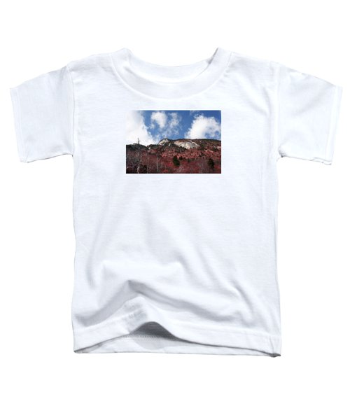 Grandfather Mountain East Side Toddler T-Shirt