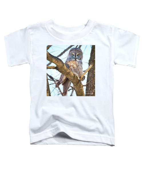 Great Gray Owl Toddler T-Shirt by Ricky L Jones