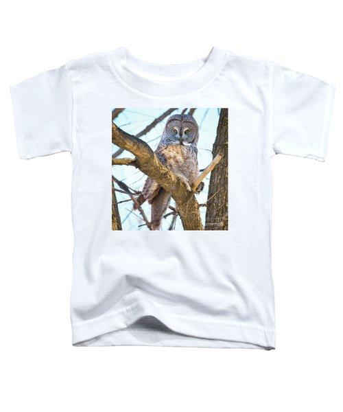 Great Gray Owl Toddler T-Shirt
