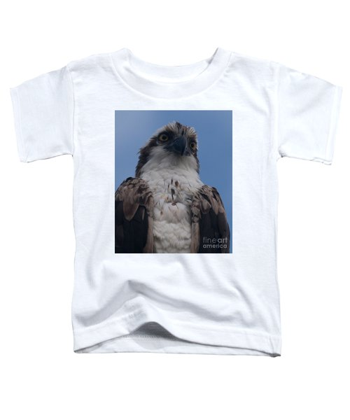 Hawk Stare Toddler T-Shirt