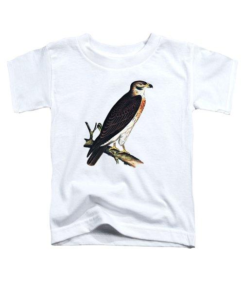 Hawk Swainsons Hawk Toddler T-Shirt
