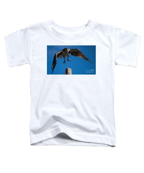 Hawk Taking Off Toddler T-Shirt