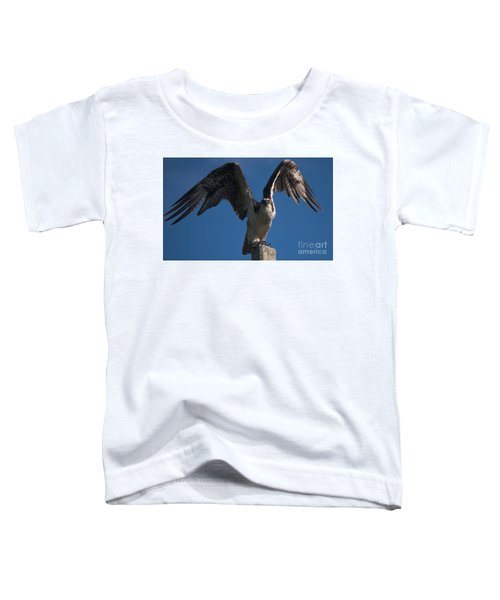Hawk Wings Toddler T-Shirt