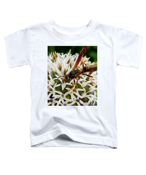 Hello, Wasp Toddler T-Shirt
