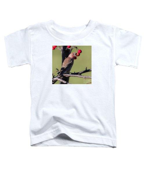 House Finch Vs Crabapple  Toddler T-Shirt by Ricky L Jones