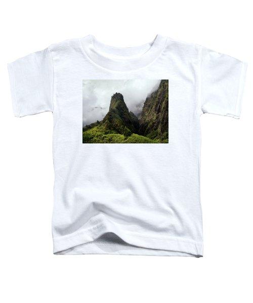 Iao Needle Toddler T-Shirt