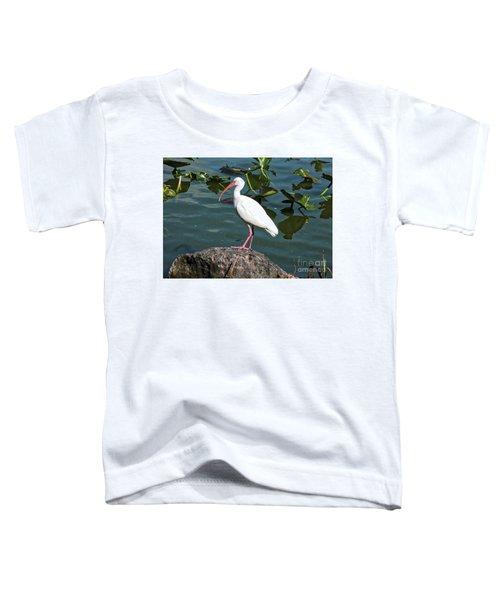 Ibis Rock Toddler T-Shirt by Carol Groenen