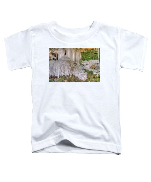 Ice Formations Toddler T-Shirt
