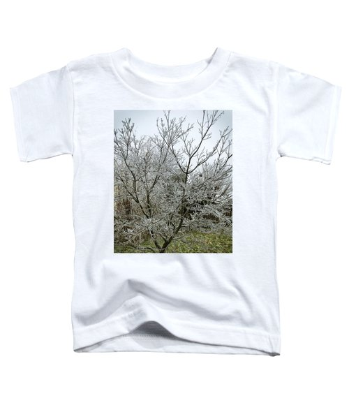 Ice Storm Toddler T-Shirt