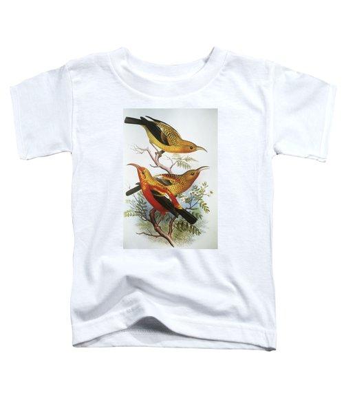 IIwi Toddler T-Shirt