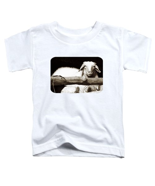 In The Pen Toddler T-Shirt by Ethna Gillespie