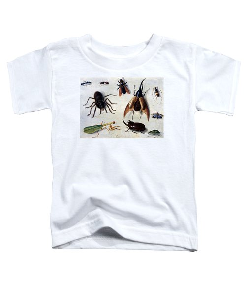 Insects, 1660 Toddler T-Shirt