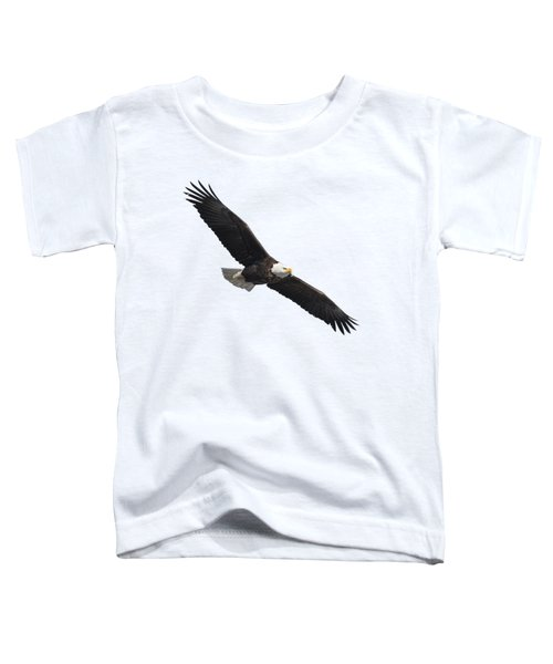 Isolated American Bald Eagle 2016-2 Toddler T-Shirt