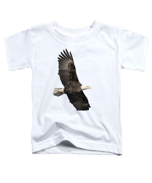Isolated American Bald Eagle 2016-4 Toddler T-Shirt