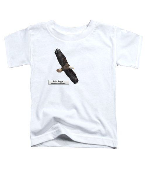 Isolated Bald Eagle 2018-1 Toddler T-Shirt