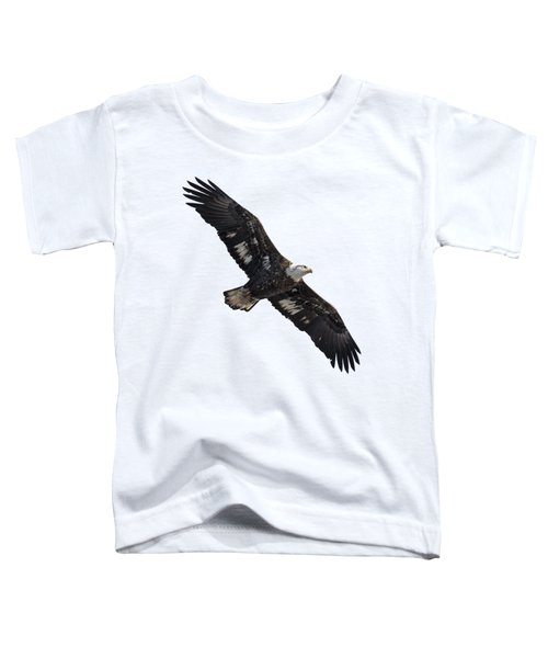 Isolated Juvenile American Bald Eagle 2016-1 Toddler T-Shirt