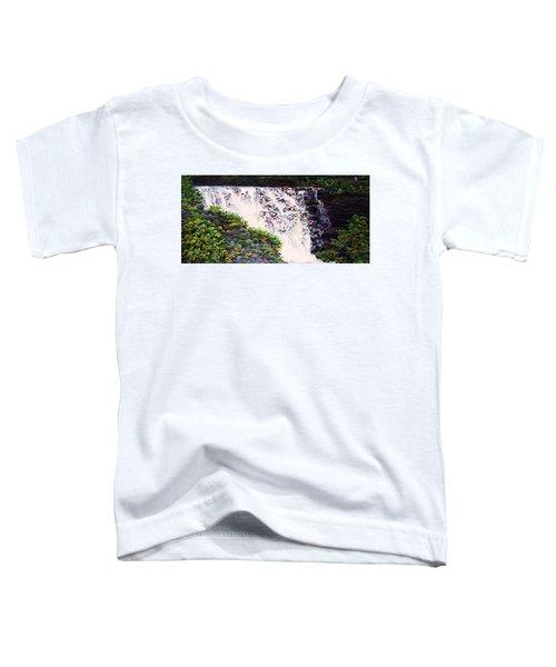 Kakabeca's Concertillion Toddler T-Shirt