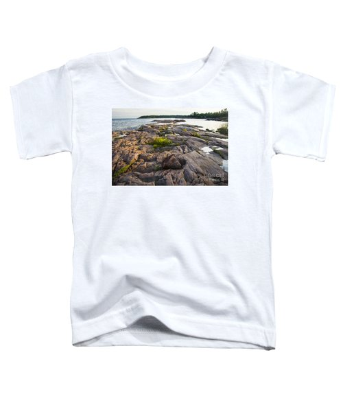 Killarney Granite Pink-4433 Toddler T-Shirt