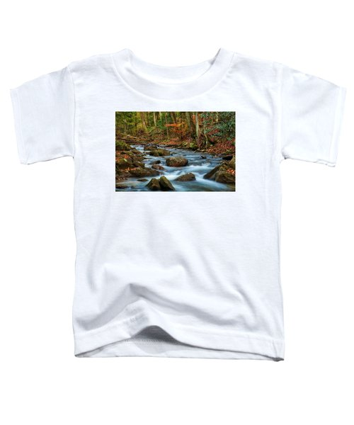 Laurel Fork In The Fall Toddler T-Shirt