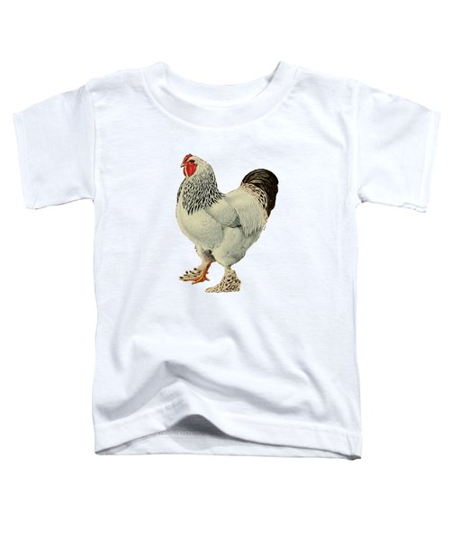 Light Brahmas Rooster Toddler T-Shirt by Unknown