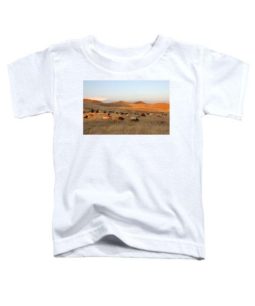 Longhorns Toddler T-Shirt