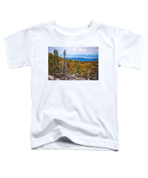 Looking East From Bear Rocks 4290c Toddler T-Shirt