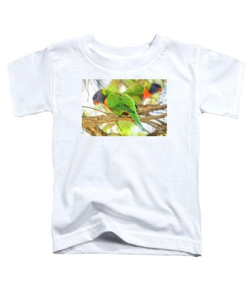 Lorrikeets 02 Toddler T-Shirt