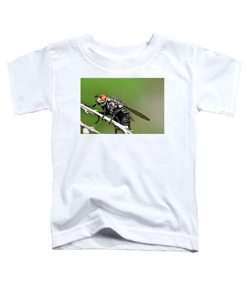 Macro Fly Toddler T-Shirt