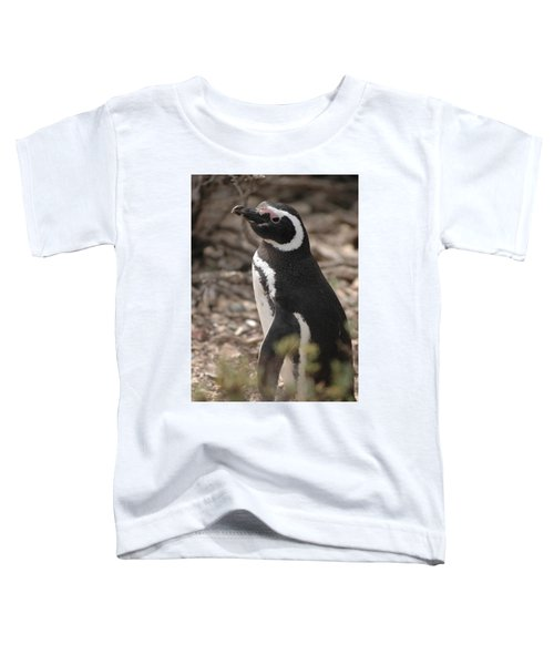 Magellanic Penguin No. 1 Toddler T-Shirt by Sandy Taylor