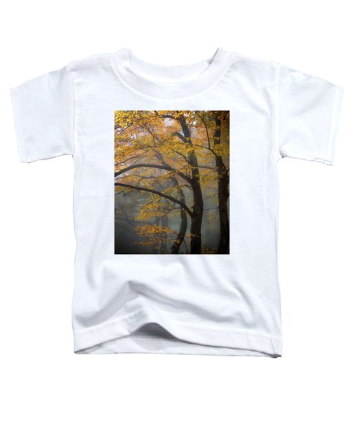 Magical Forest Blue Ridge Parkway Toddler T-Shirt