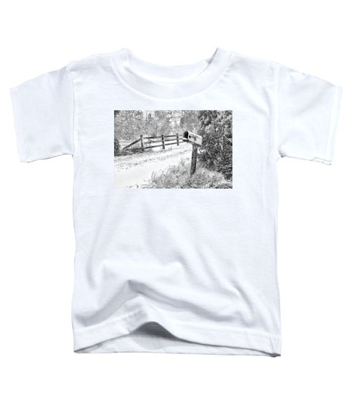 Mailbox Snow Toddler T-Shirt