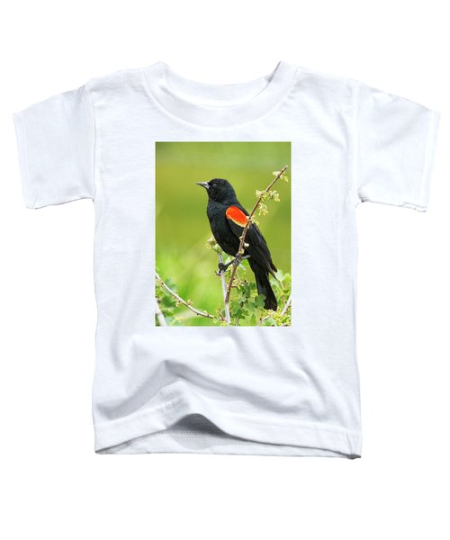 Male Red-winged Blackbird Toddler T-Shirt