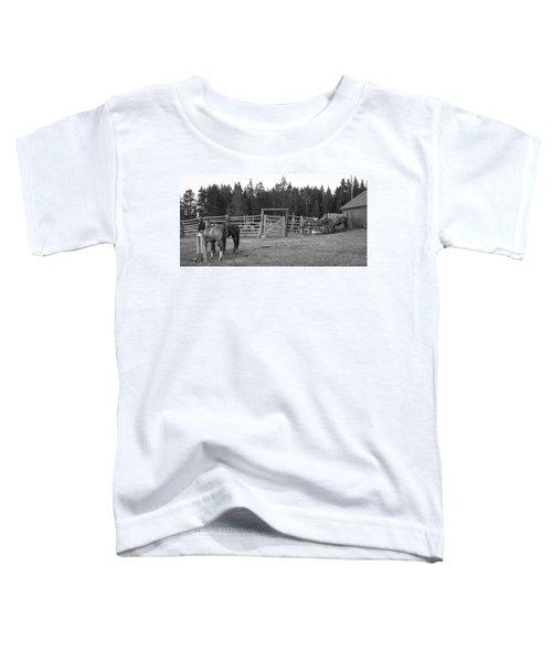 Mountain Corrals Toddler T-Shirt