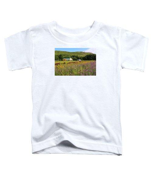 Mountain View Farm Easthampton Toddler T-Shirt