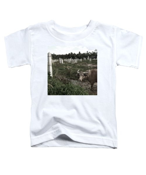 Mourning In The Palm-tree Graveyard Toddler T-Shirt