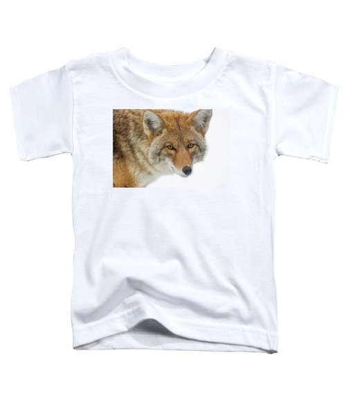 Mr. Coyote Toddler T-Shirt