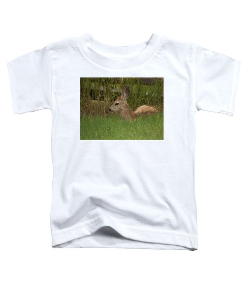 Muledeerfawn1 Toddler T-Shirt
