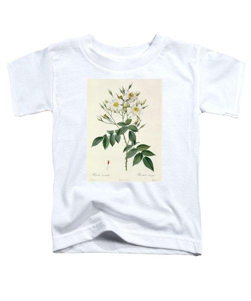 Musk Rose Toddler T-Shirt