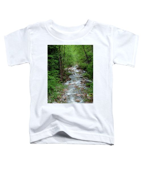 Naturally Pure Stream Backroad Discovery Toddler T-Shirt