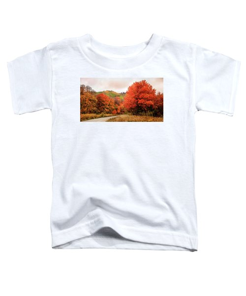 Nature's Palette Toddler T-Shirt