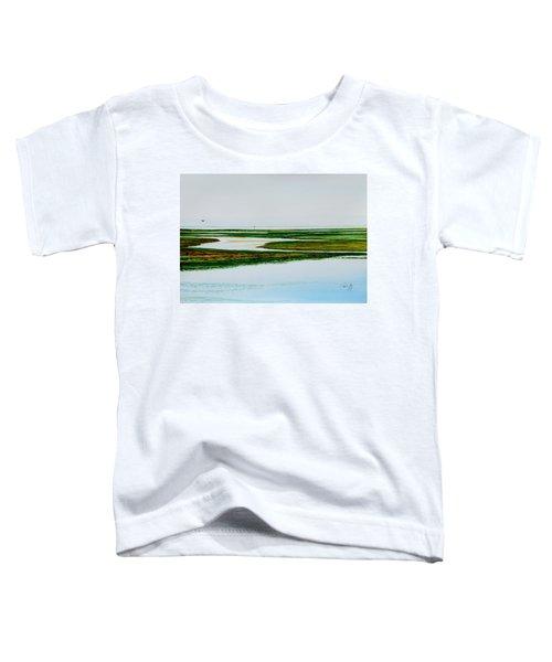 Nauset Osprey Toddler T-Shirt