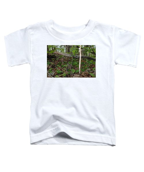 New Life In The Undergrowth Of The Forest Toddler T-Shirt