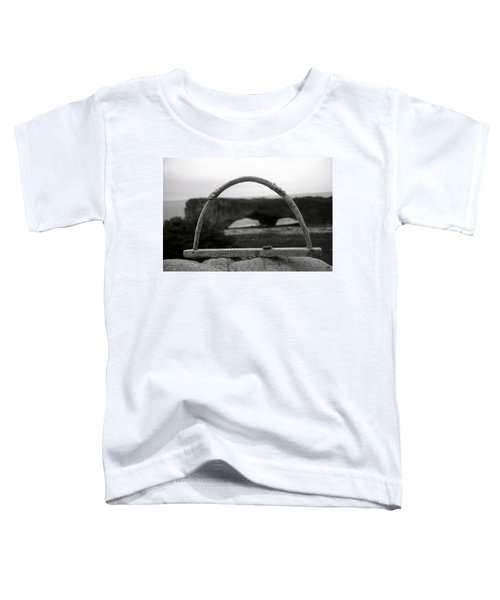 Newfoundland Arches Toddler T-Shirt