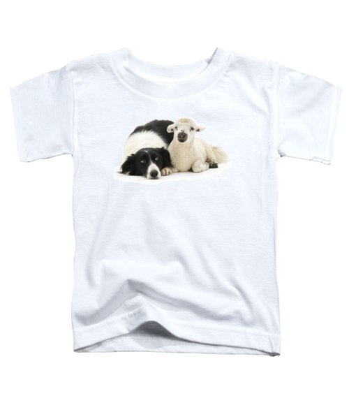 No Sheep Jokes, Please Toddler T-Shirt