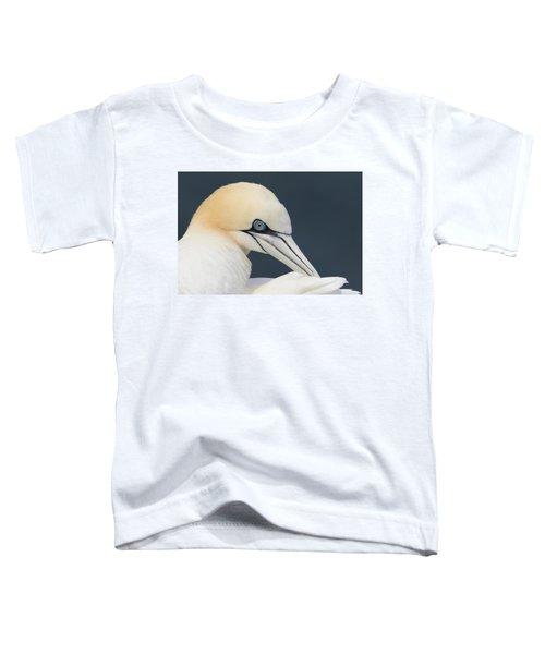 Northern Gannet At Troup Head - Scotland Toddler T-Shirt
